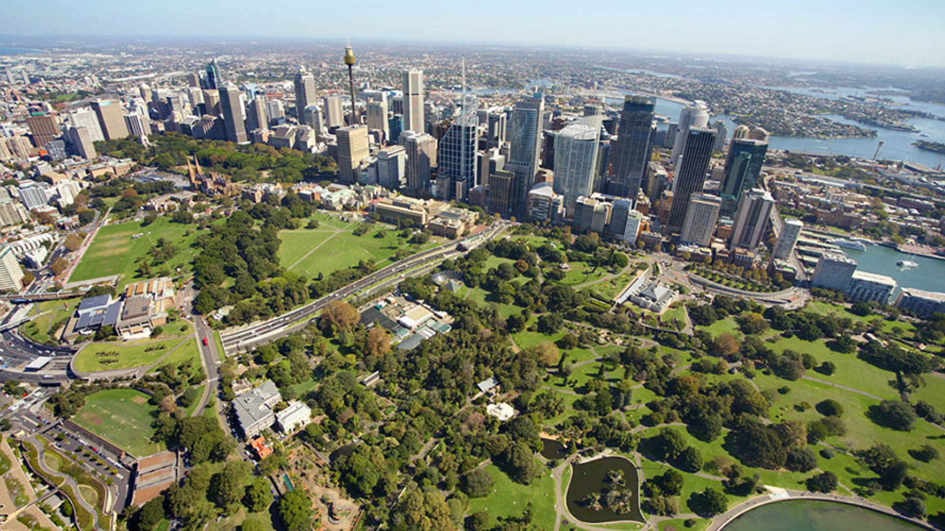 bird's eye view of Royal Botanic Gardens