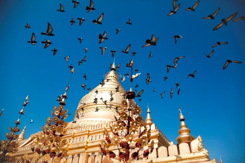 Private half-day Bagan Temple Tour